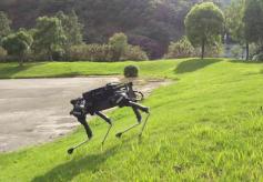 """彩虹鱼、莱卡狗、壁虎……仿生机器人竟有了""""生命"""""""