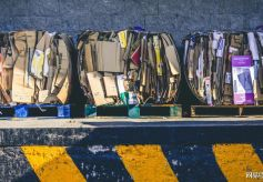 机器人助力垃圾分类行业 风投如何加速产业升级?